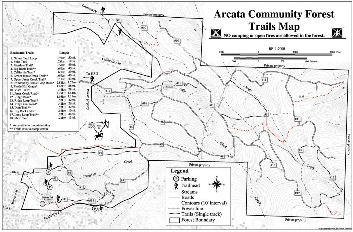 Arcata Community Forest Mountain Bike Trail In Arcata California
