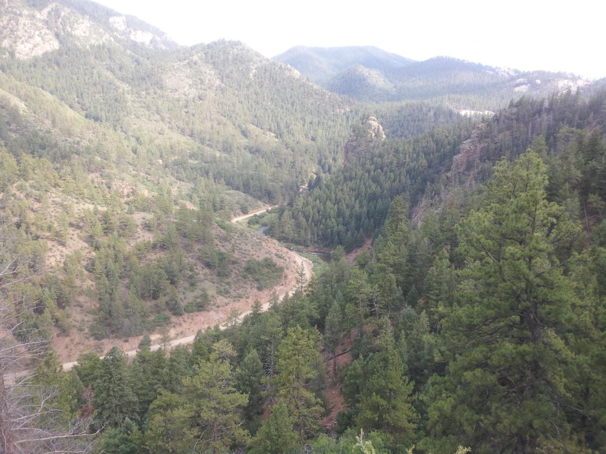 Colorado Trail: South Platte To Buffalo Creek
