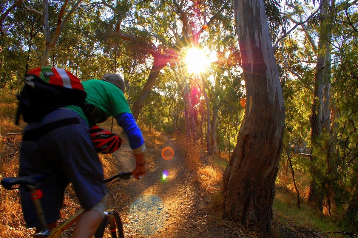 Yarra Trails