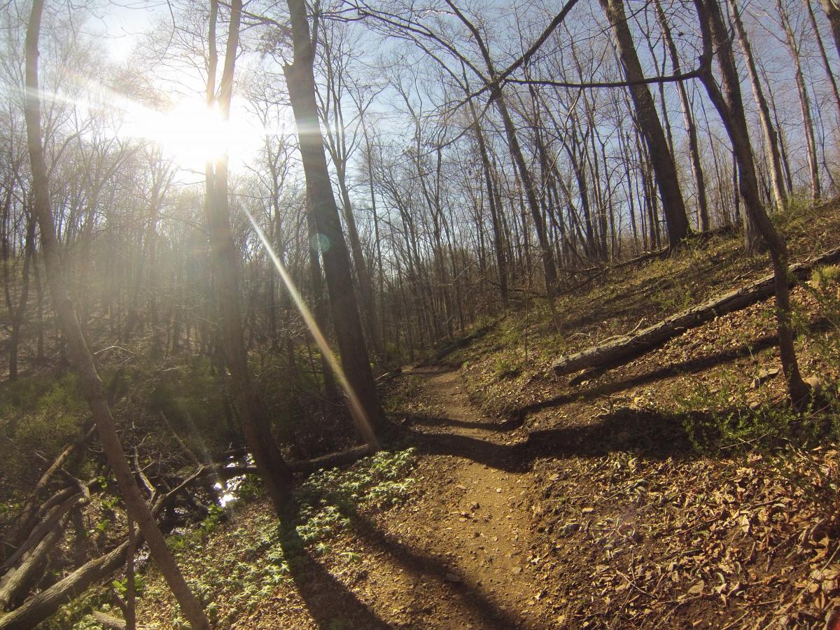 Nassau Trails