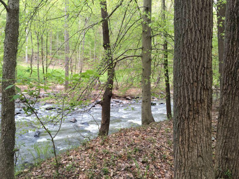 Wincopin (Savage) Trail