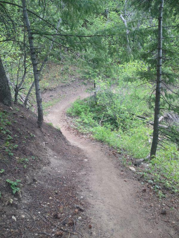 Eagle Vail Trail