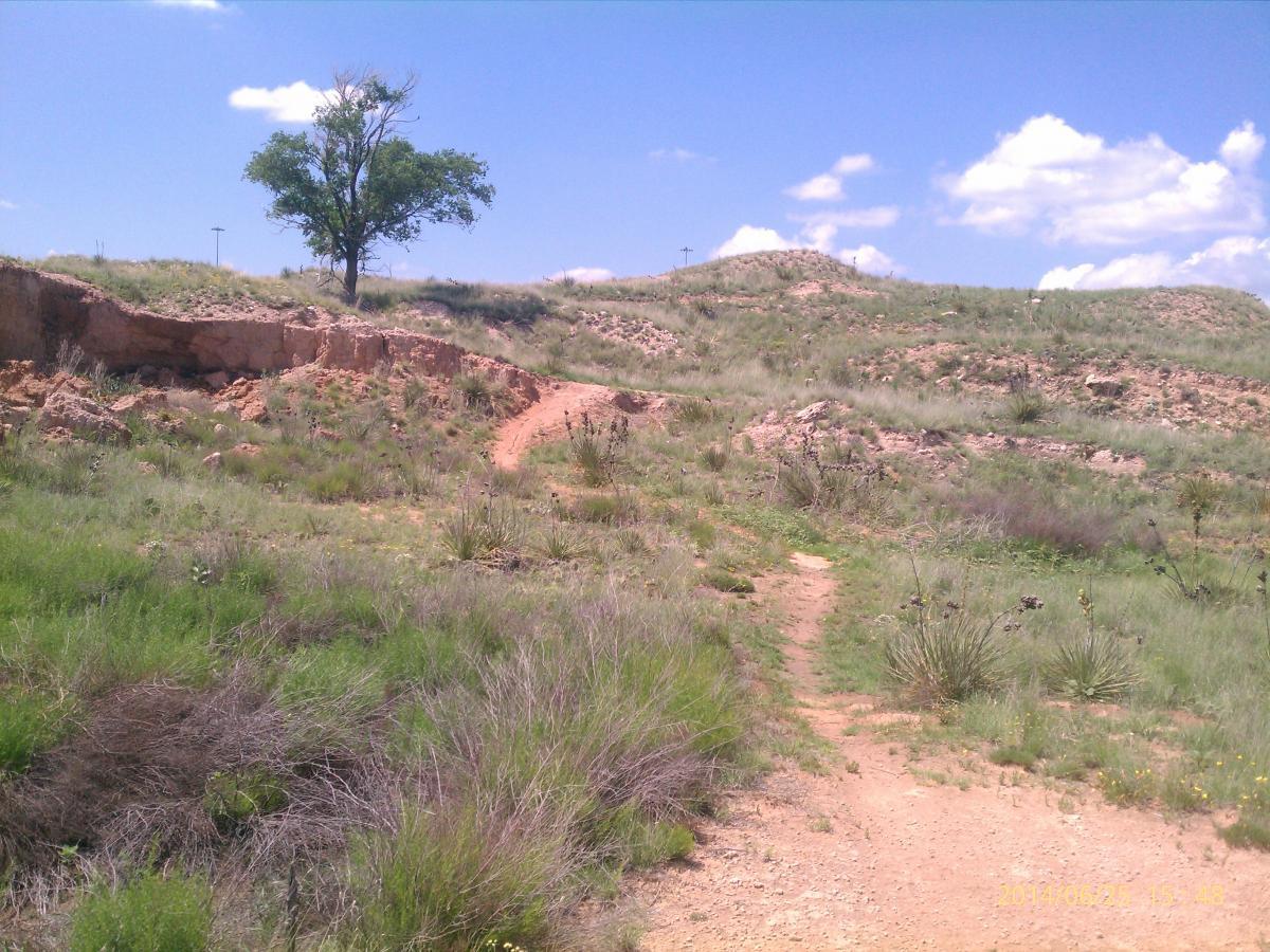864b092ad1be Buffalo Trails Mountain Bike Trail in Canyon