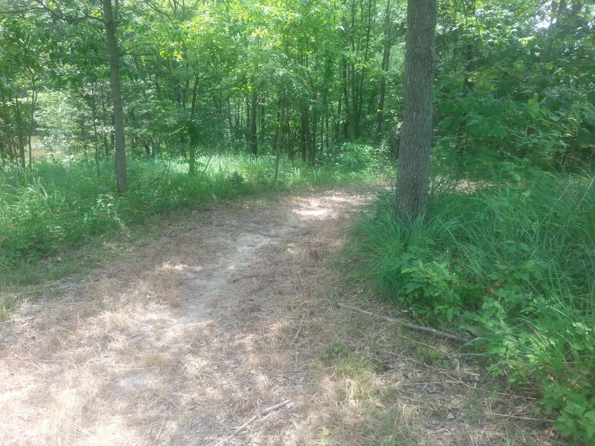 Newton Lake Equestrian Trail