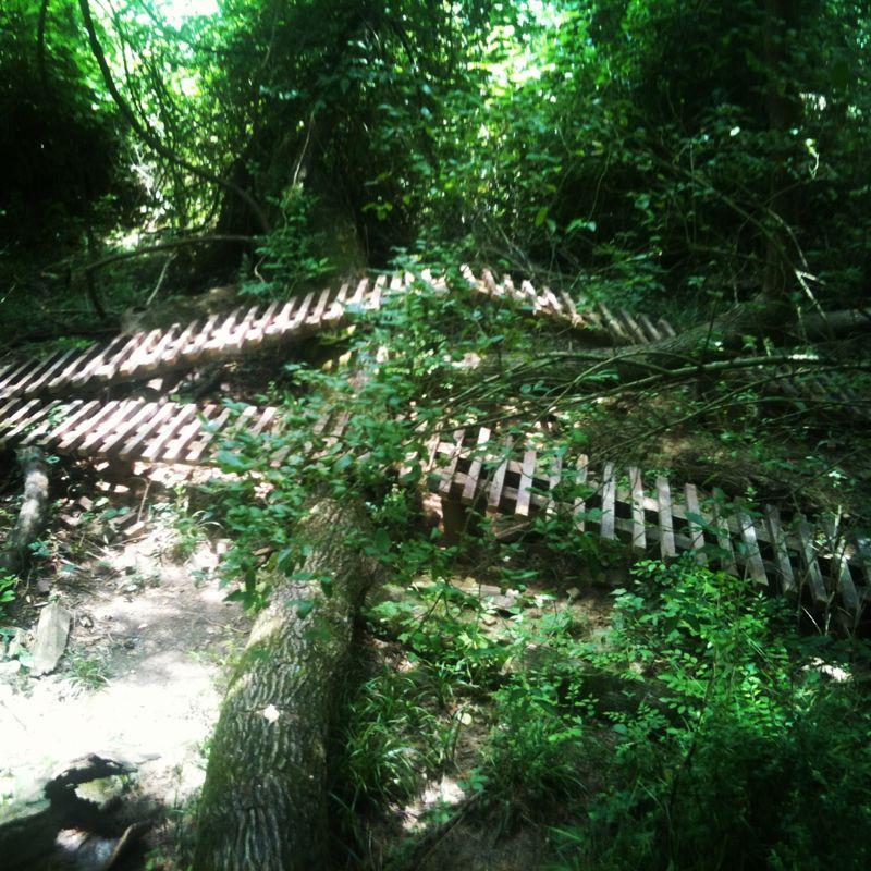 TDK trails