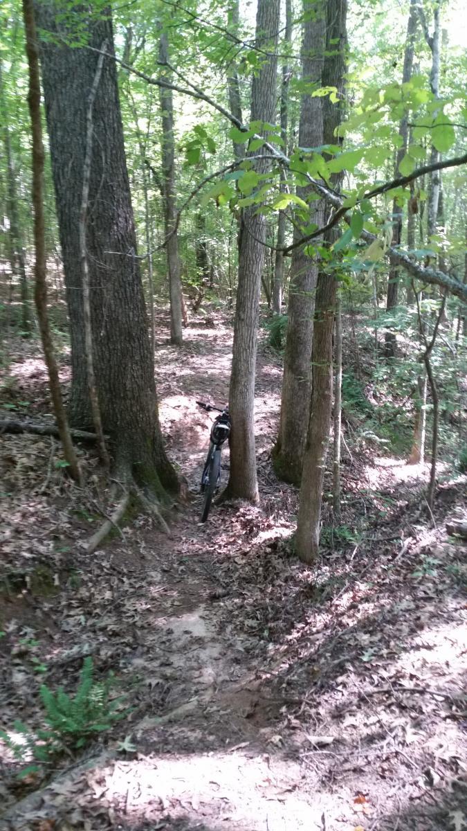 Stinky Trail