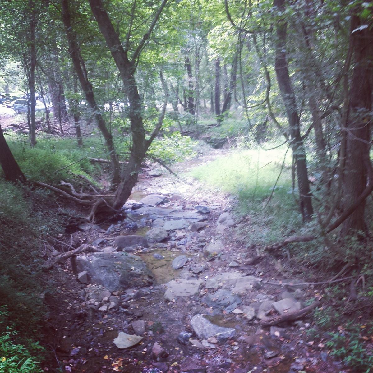 Seneca Ridge Trail