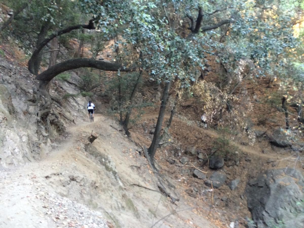 Chantry Flats Mountain Bike Trail in Sierra Madre, California ... on