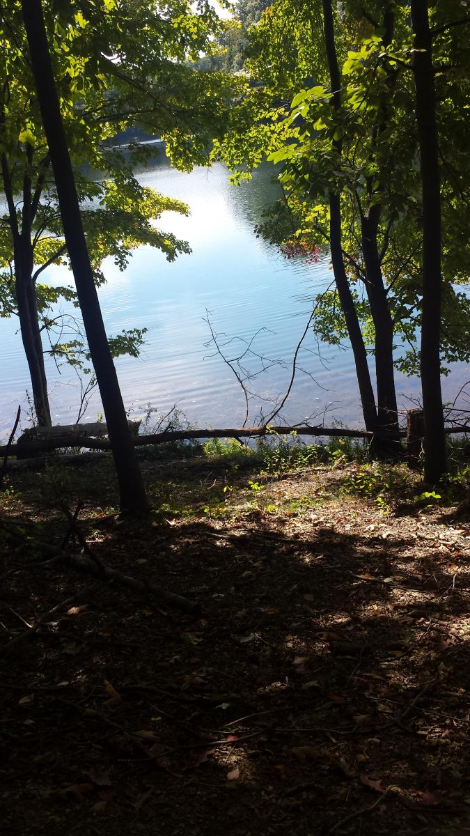 Clopper Lake