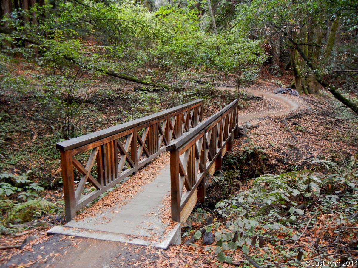Emma McCrary Trail
