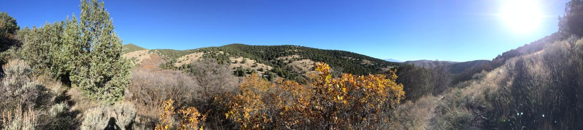 Yellow Fork Canyon County Park