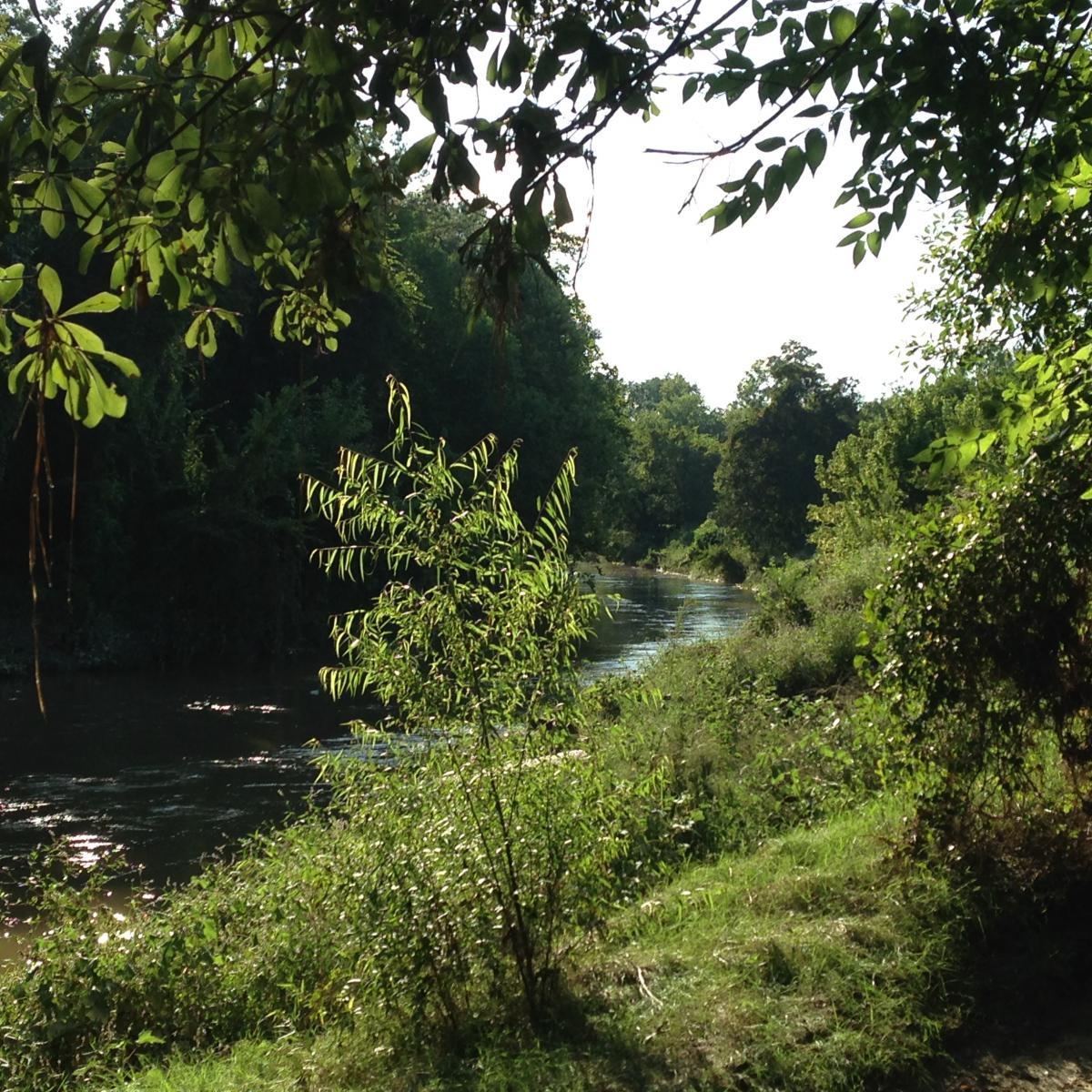 Cypresswood Trails