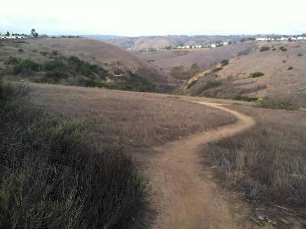Lopez Canyon Trail
