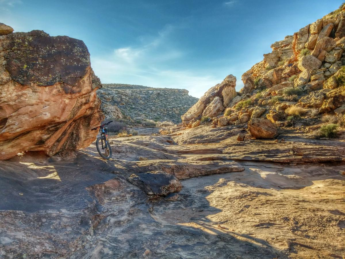 Zen Trail