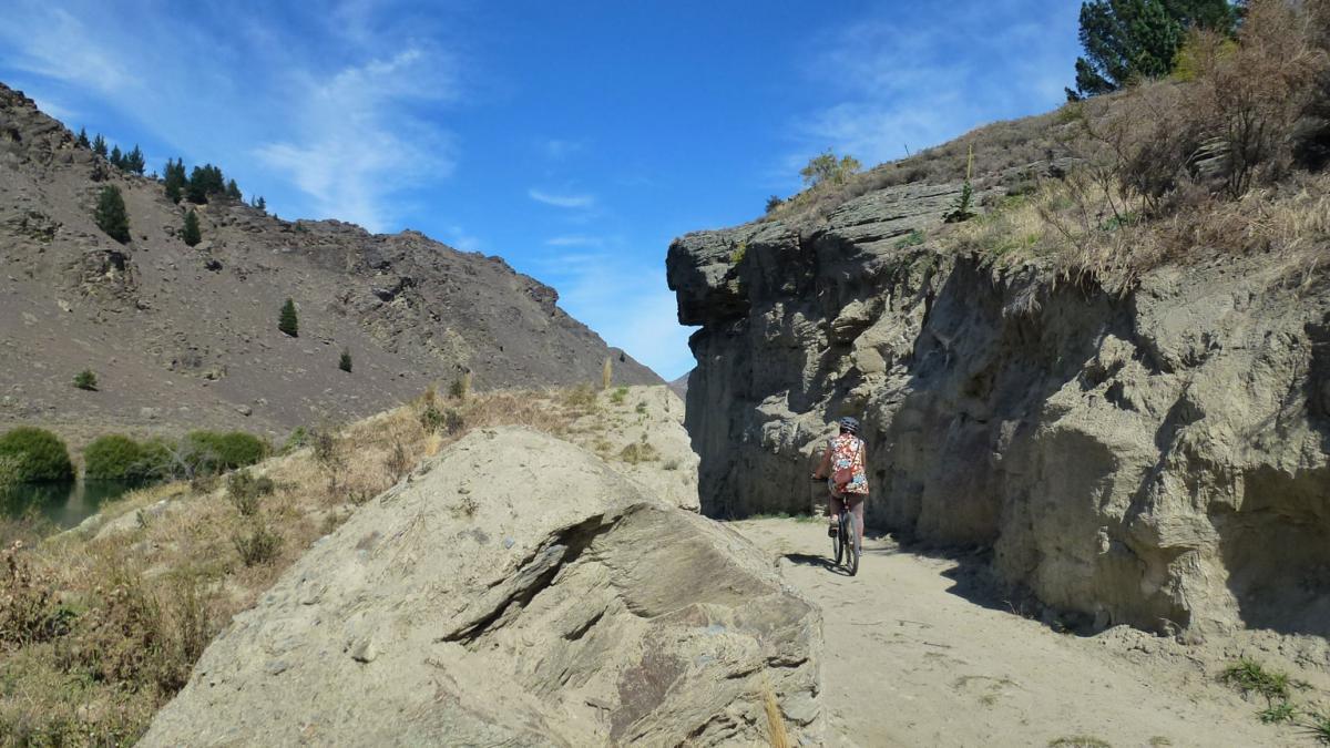 Roxburgh Gorge Trail