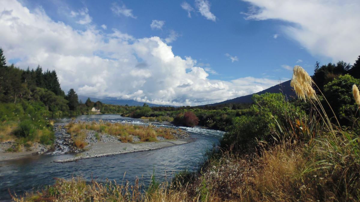 Tongariro River Trail