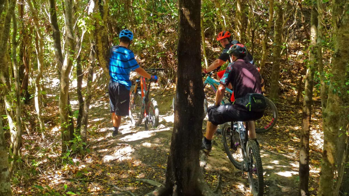 Wainuiomata Mountain Bike Park
