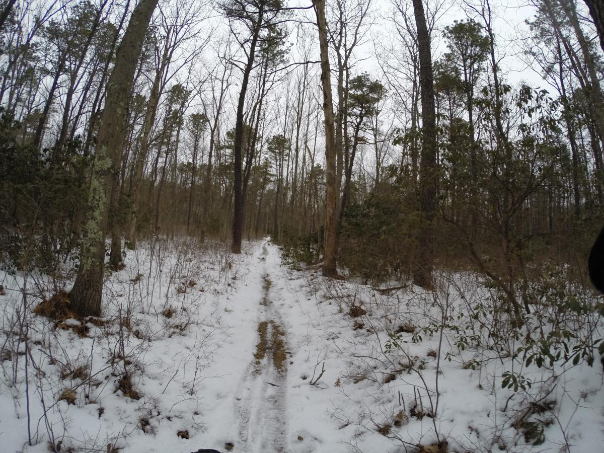 Allaire State Park
