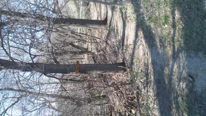 Walnut Creek MTB
