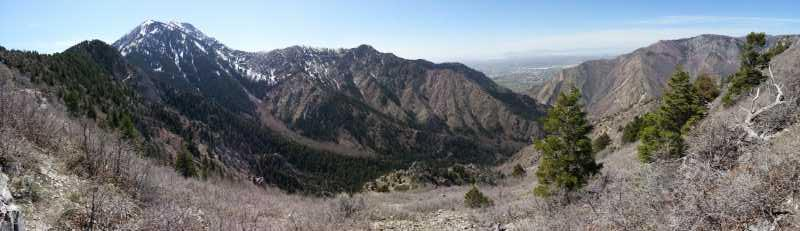 Coldwater Canyon Overlook