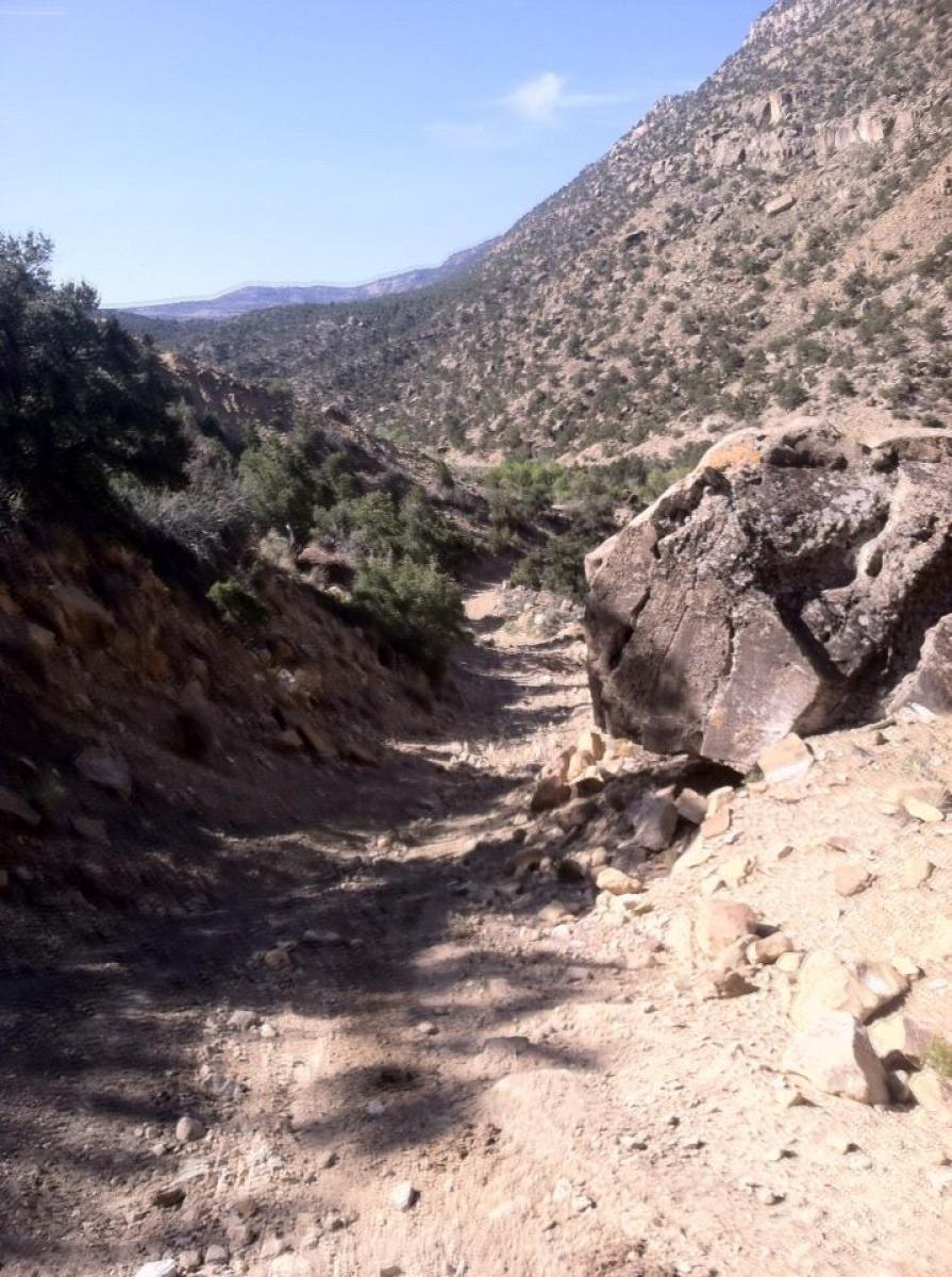 Black Dragon Trail