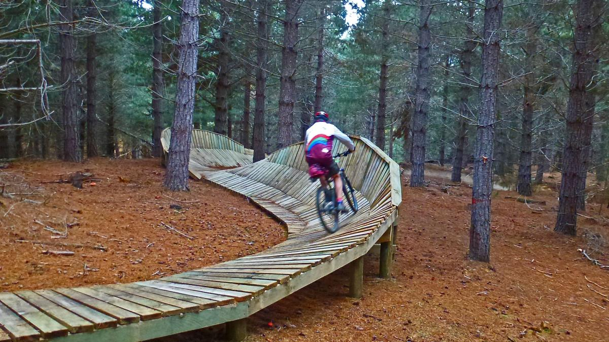 Naseby Forest