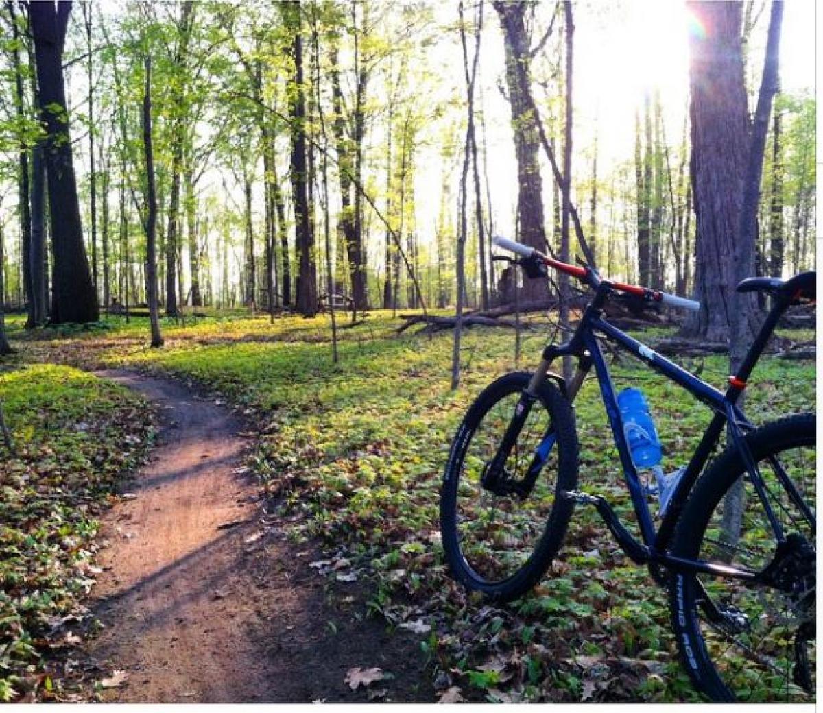Alma Mountain Bike Trail