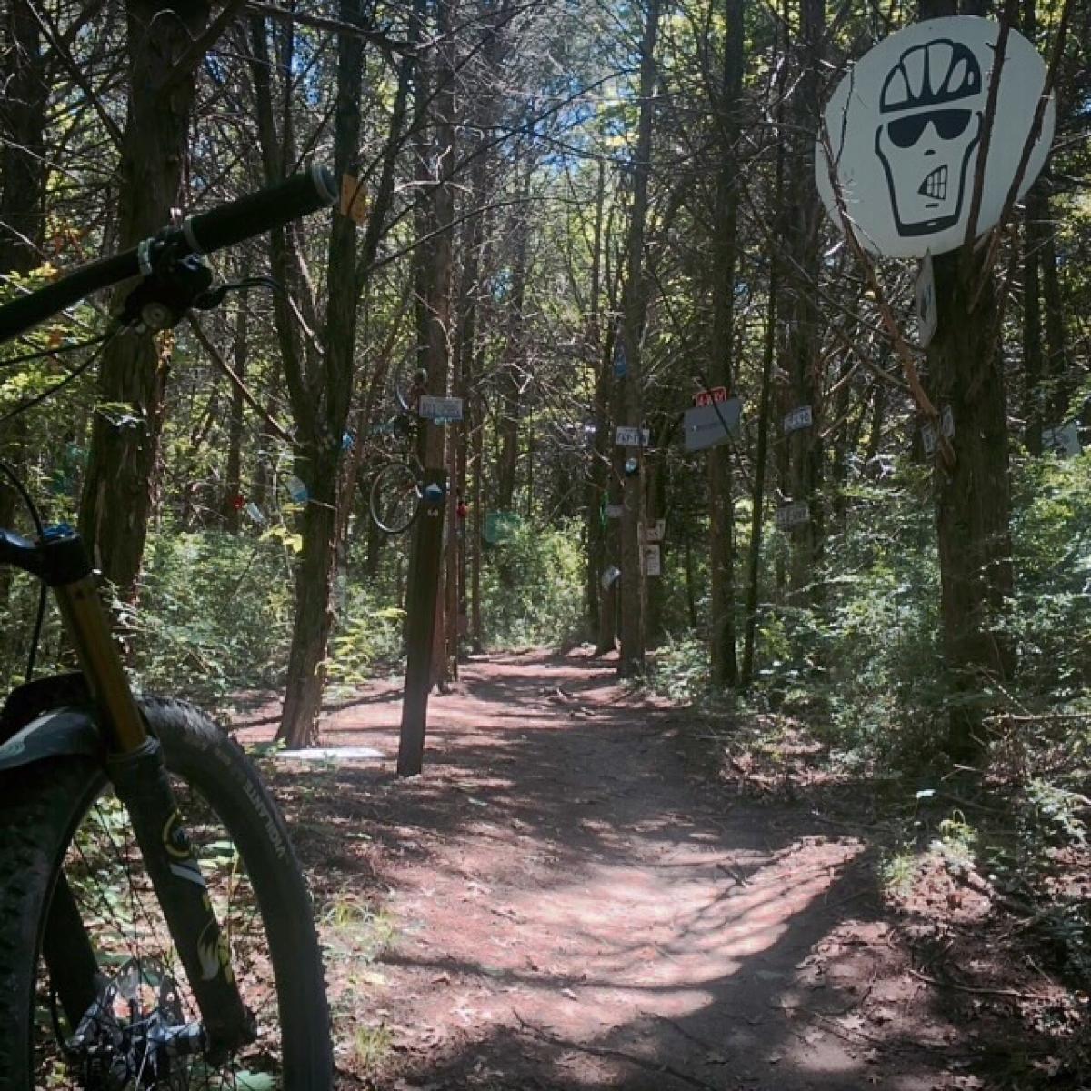 Oak Cliff Nature Preserve