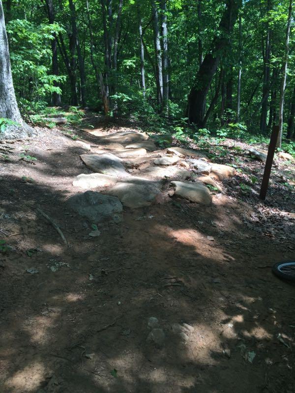 Jorge F. Arango Trail
