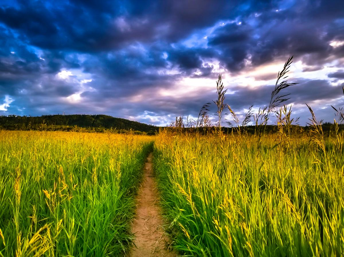Orton Trail