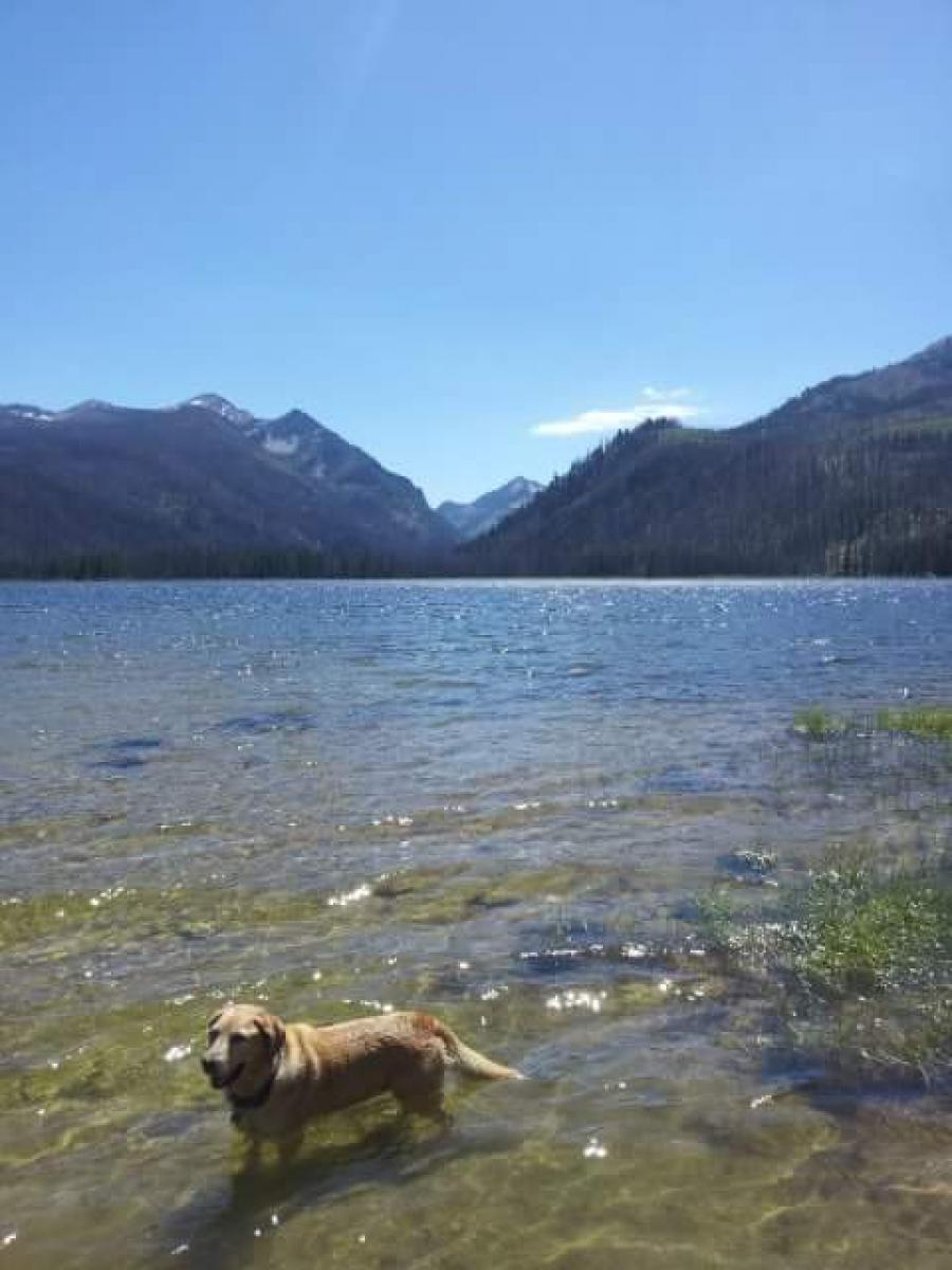 single women in loon lake Property listing for 3077 stevens road in loon lake, british columbia search for properties for sale and rent across canada and in your neighbourhood.