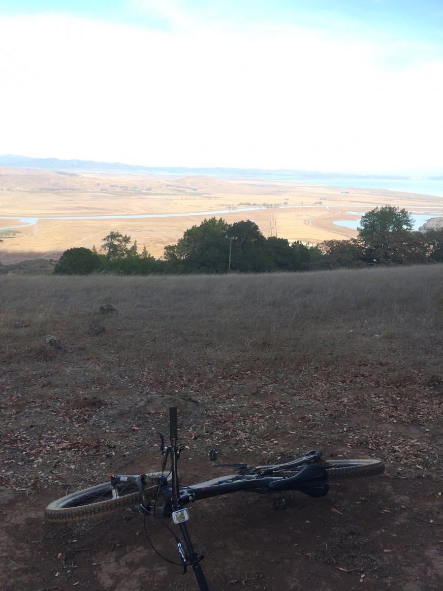 Mt Burdell