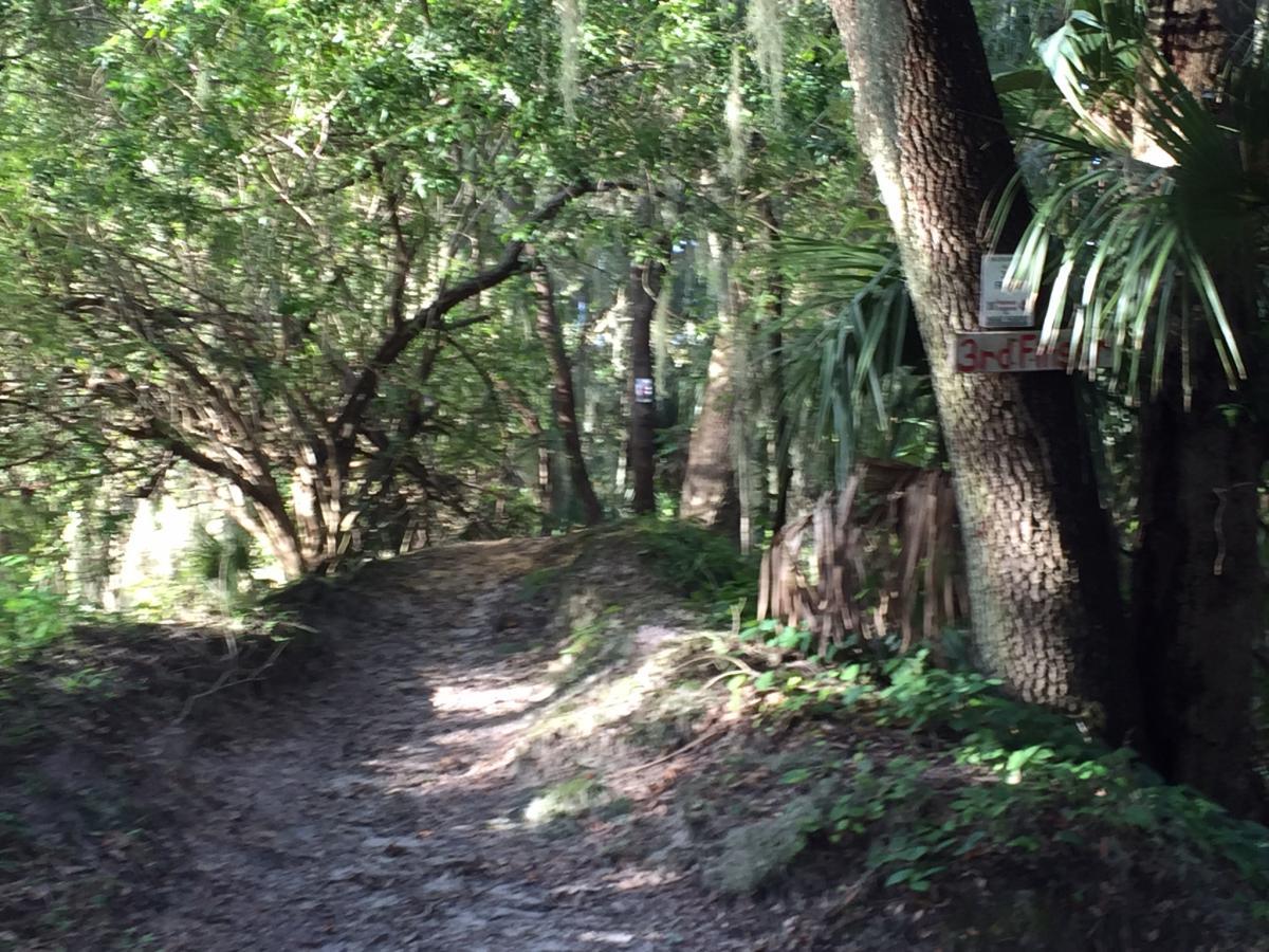 Loyce E. Harpe Park