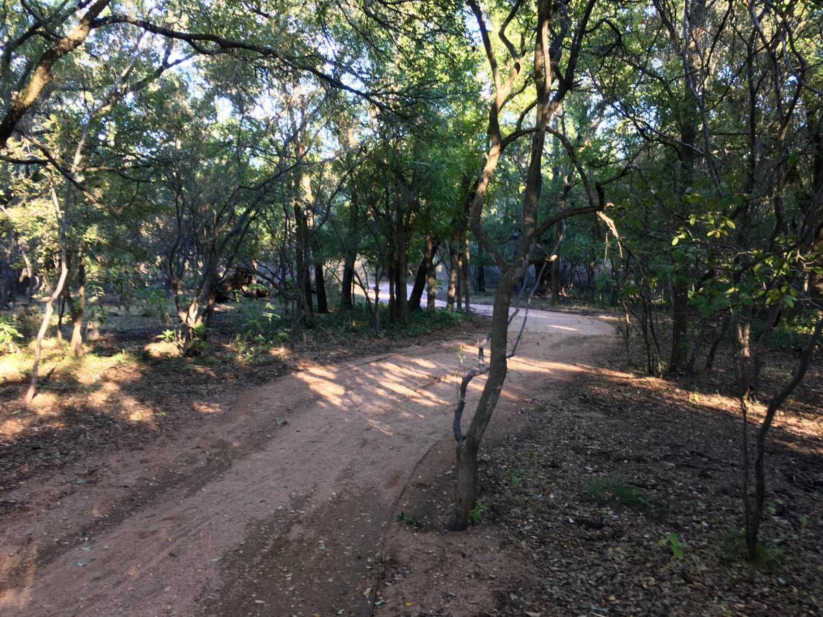 Phil Hardberger Park Mountain Bike Trail In San Antonio
