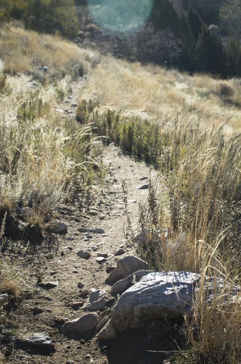 Bonneville Shoreline Trail - Ogden Section