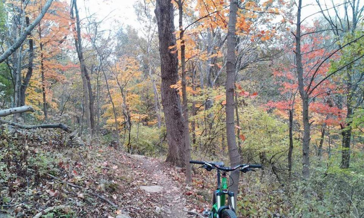 Mitchell Memorial Forest Mountain Bike Trail