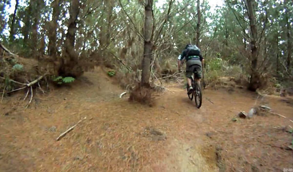 Zorinsky Mountain Bike Trail 2