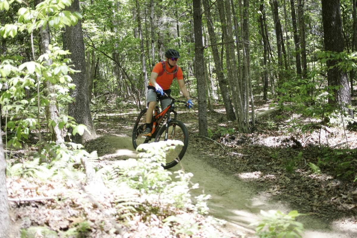 Ridgeline Trail #65
