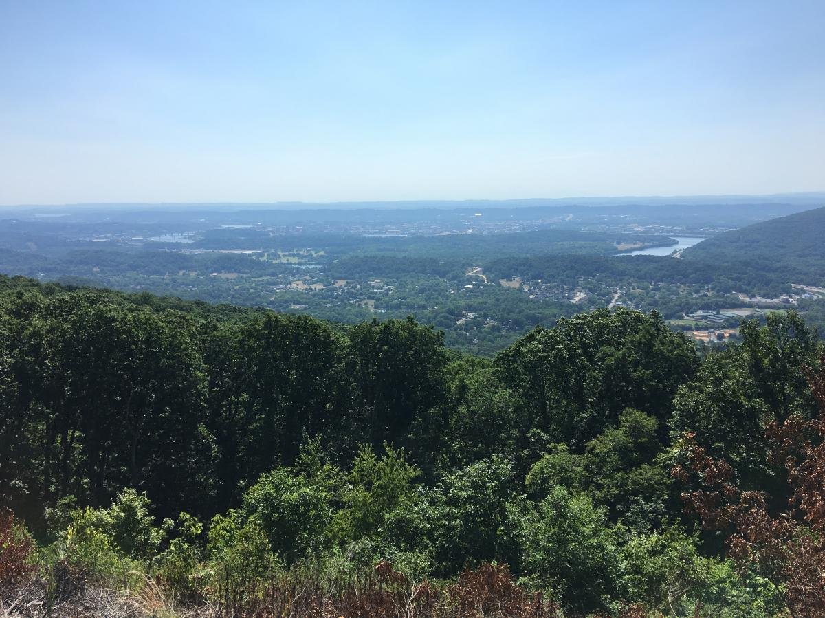 Raccoon Mountain Trail Network