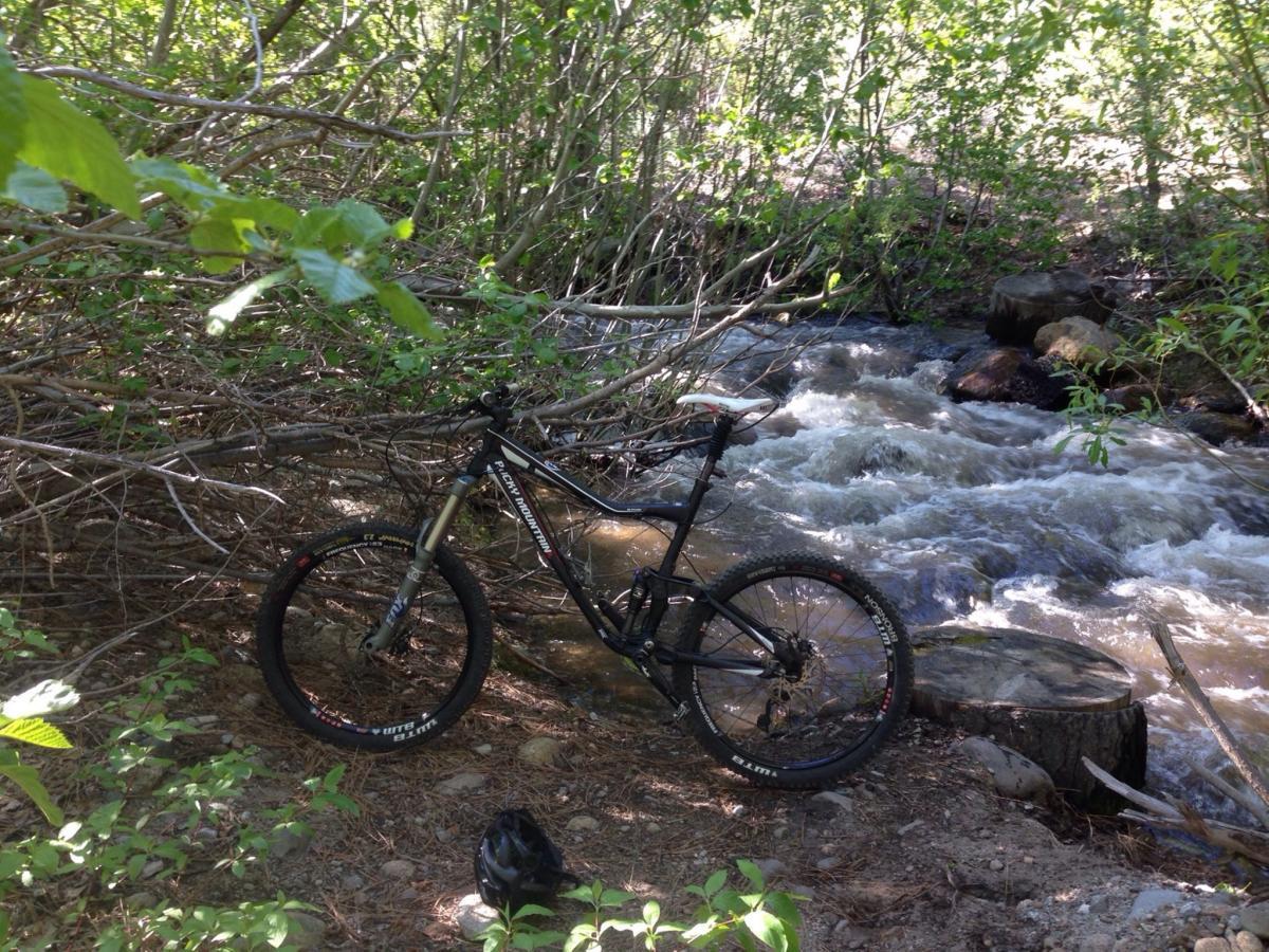 Galena Creek Trail Mountain Bike Trail In Reno Nevada