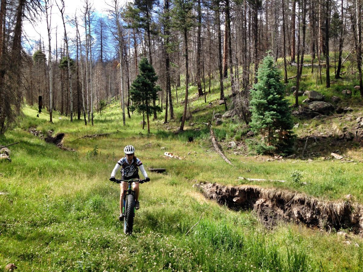 Valles Caldera Trails