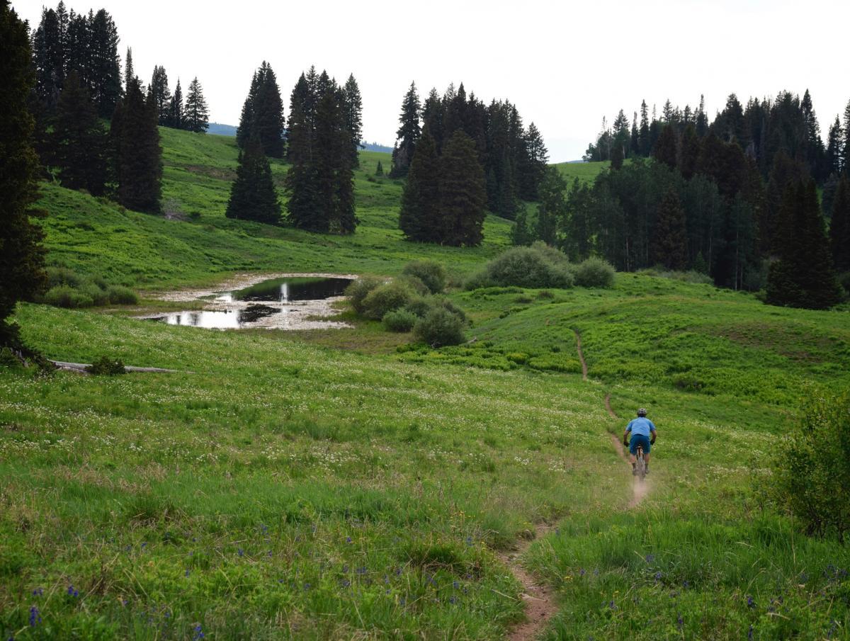 Meadow Mountain