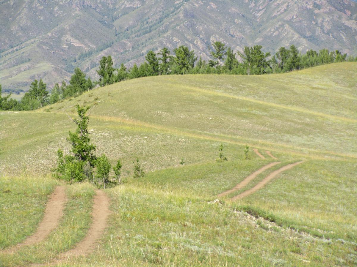 Baatar Van Trails
