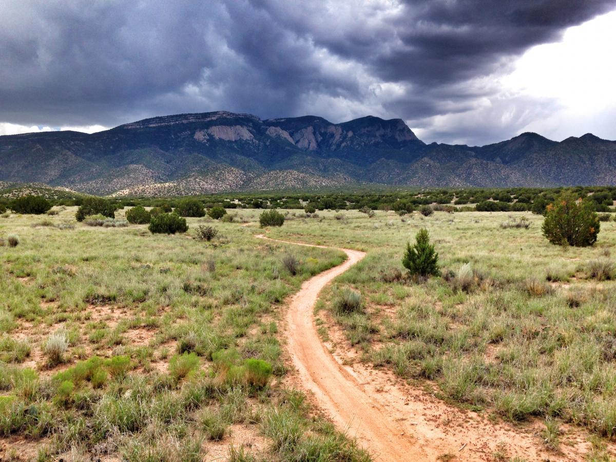 Placitas Trails