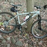Velociraptor 29er Raleigh Talus Mountain...