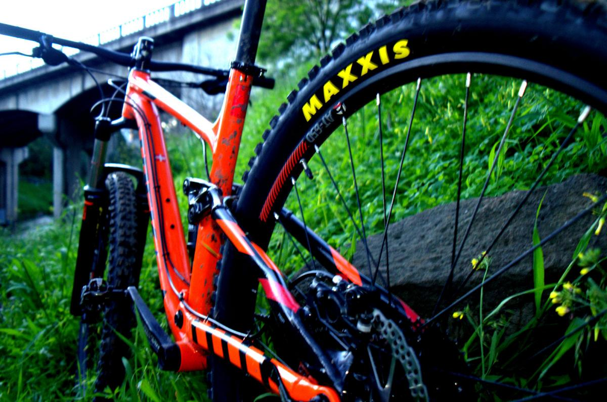 Maxxis Maxxis Minion DHF 29 x 2.5 tyres