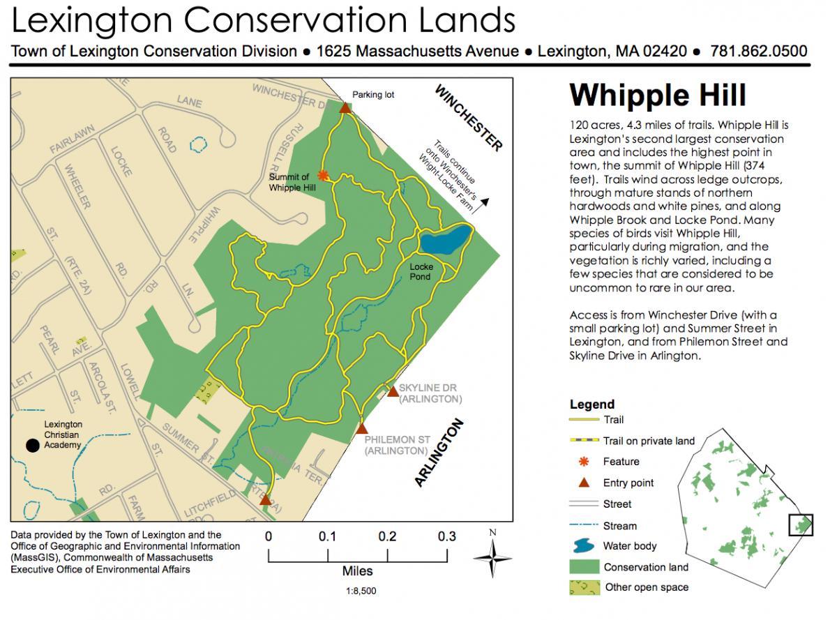 Whipple Hill