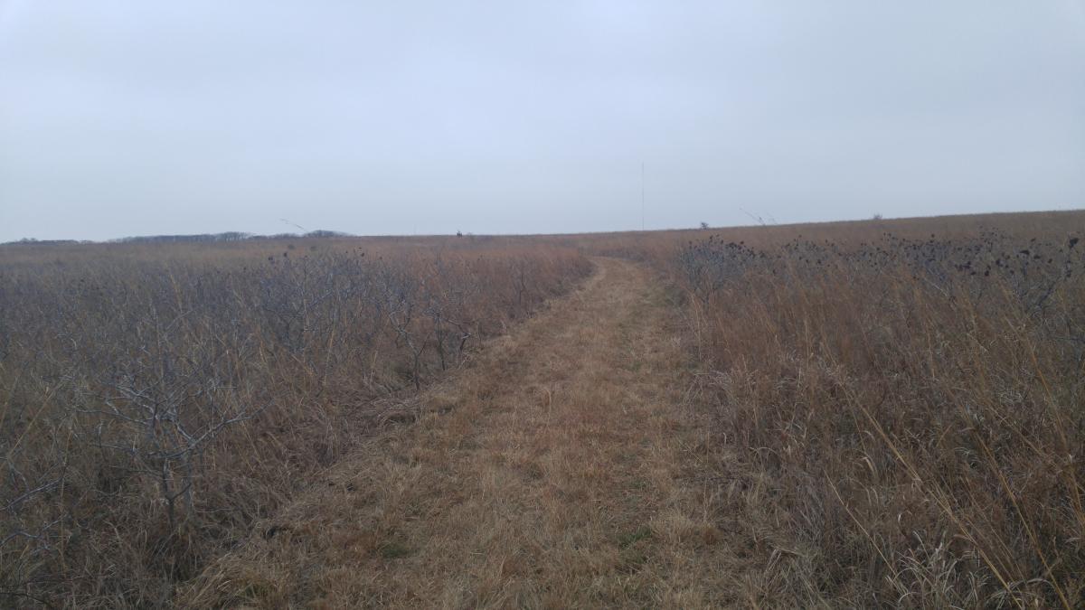 Turkey Run Trail