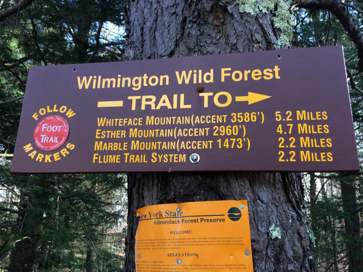 Flume Trails