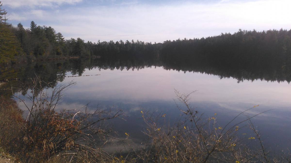 otter lake gay singles Little rock neighborhoods by amanda galiano updated 03/19/18 share pin email  otter creek is a planned recreational community they have gated security,.